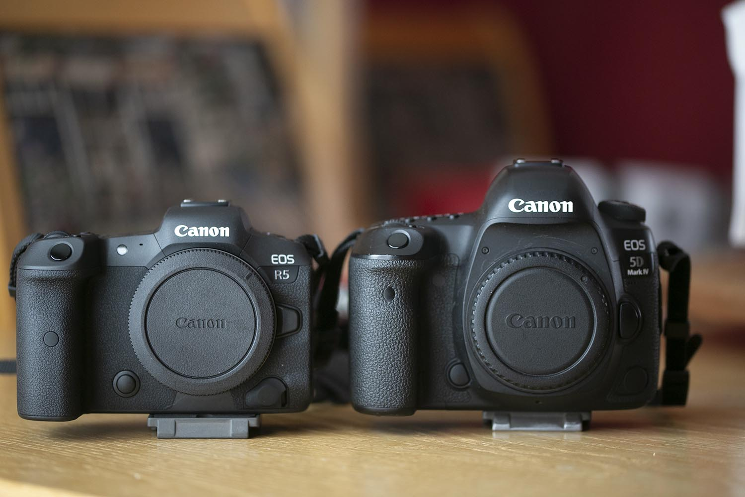 A Canon R5 and 5D IV side by side.